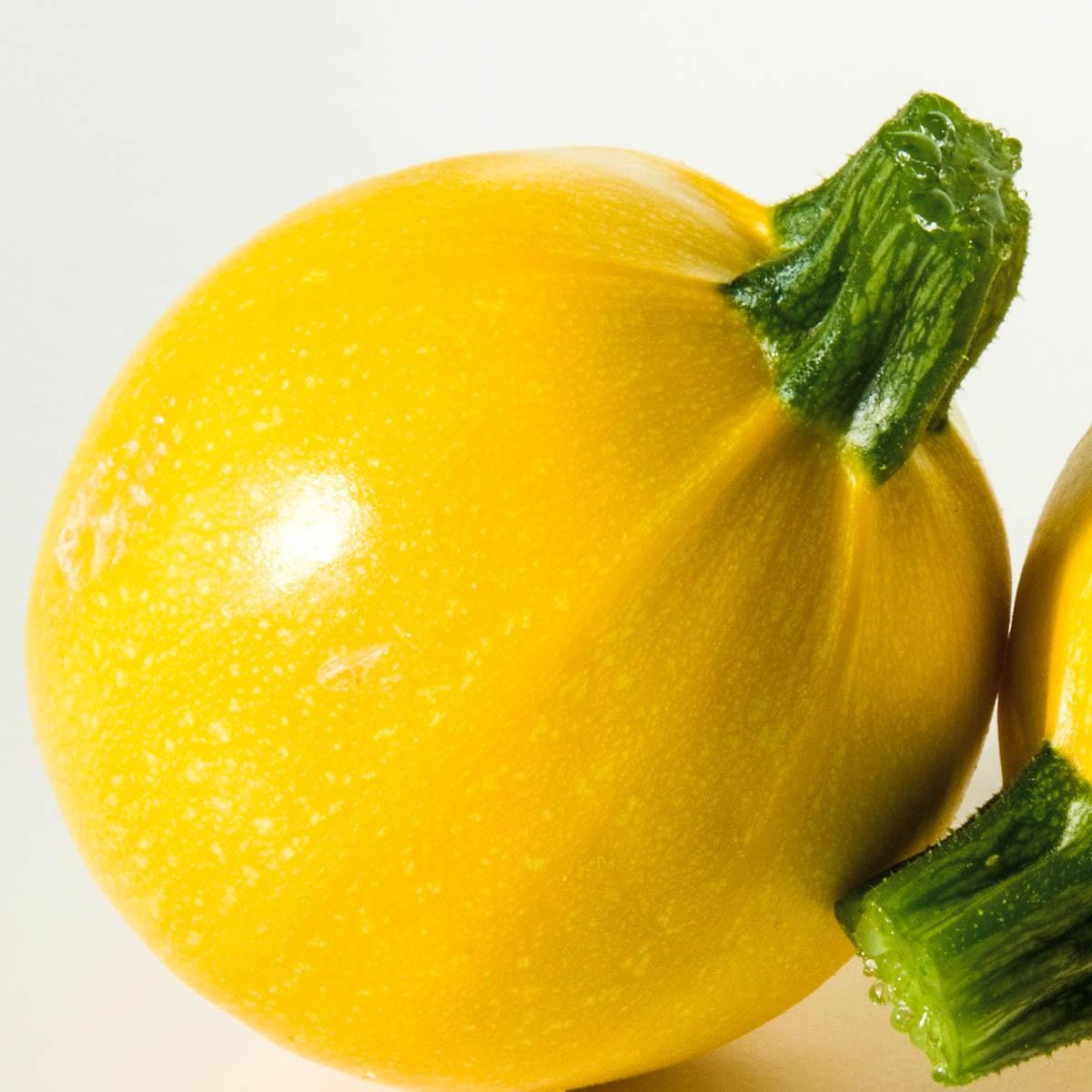 Runde gelbe Zucchini 'Floridor'