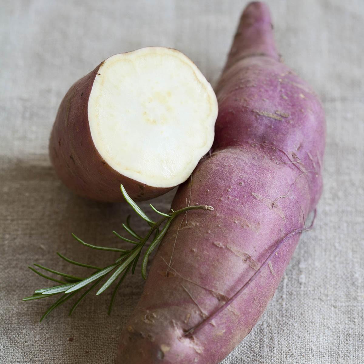 Speise-Süßkartoffel 'Erato® White'