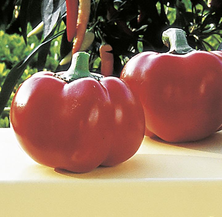 "Tomatenpaprika ""Pritavit"""