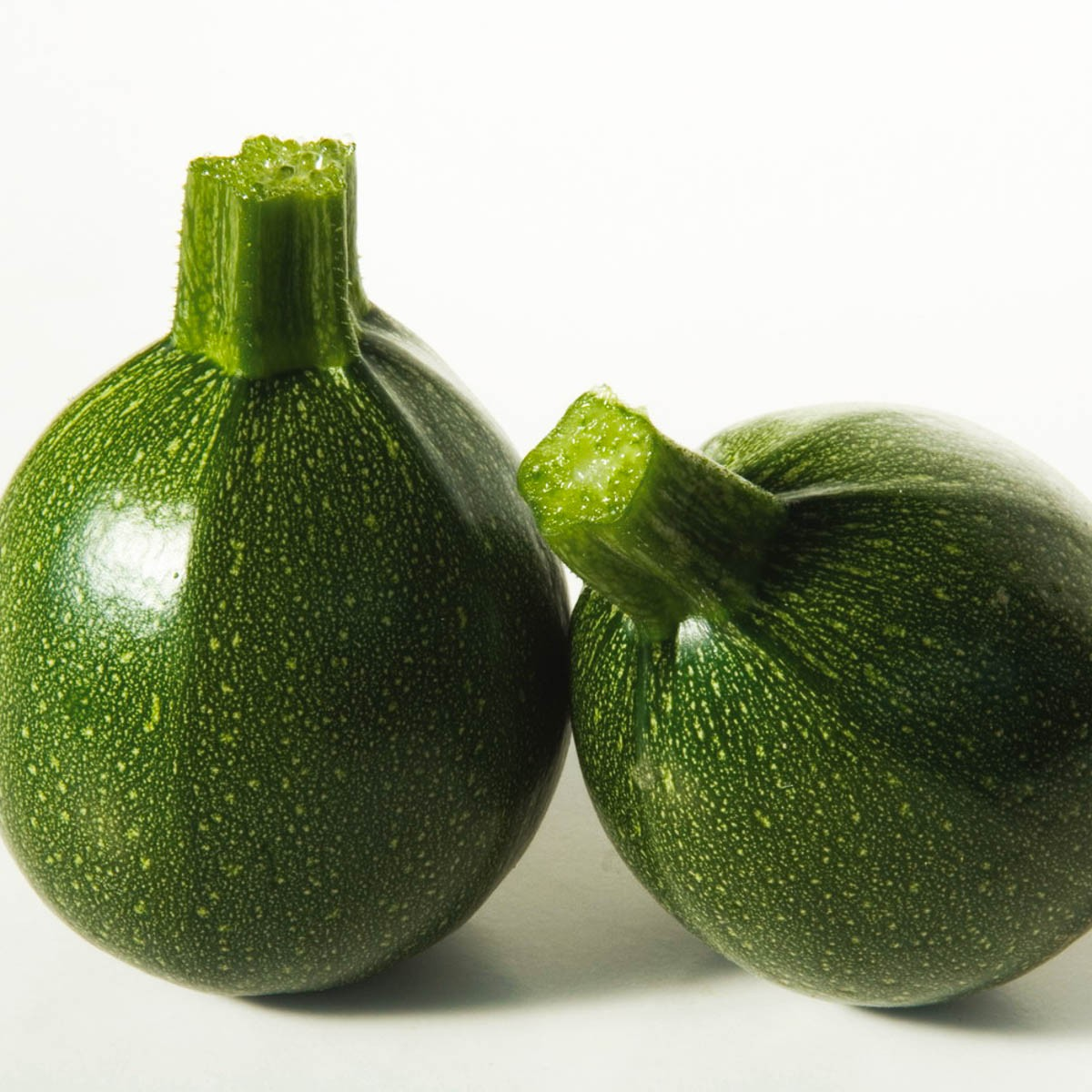 Runde grüne Zucchini 'Satelite'