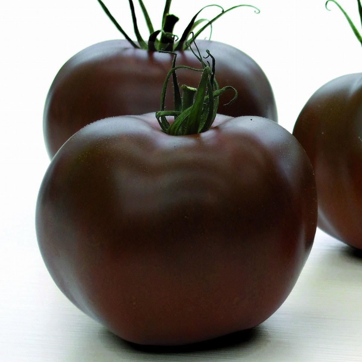 Schokoladen-Tomate 'Kakao' (veredelt) - 140gr.